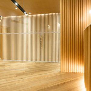 Studio Saradini